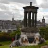 082_Edinburgh_4